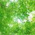 【東京/無料】5・6月資産形成セミナー/投資入門セミナー開催のお知らせ